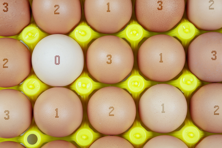 plate of chicken eggs marked according to their breeding method. Concept of qualitative marking of eggs